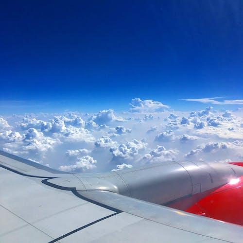 Free stock photo of airplane, airplane window, airplane wing, airplanes