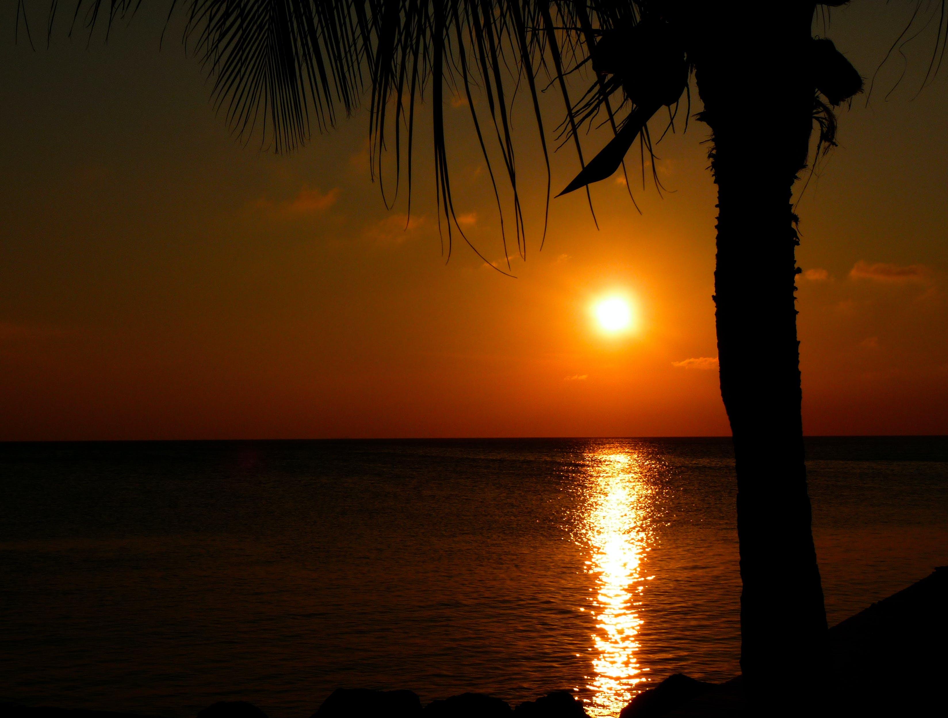 caribbean, dawn, dusk