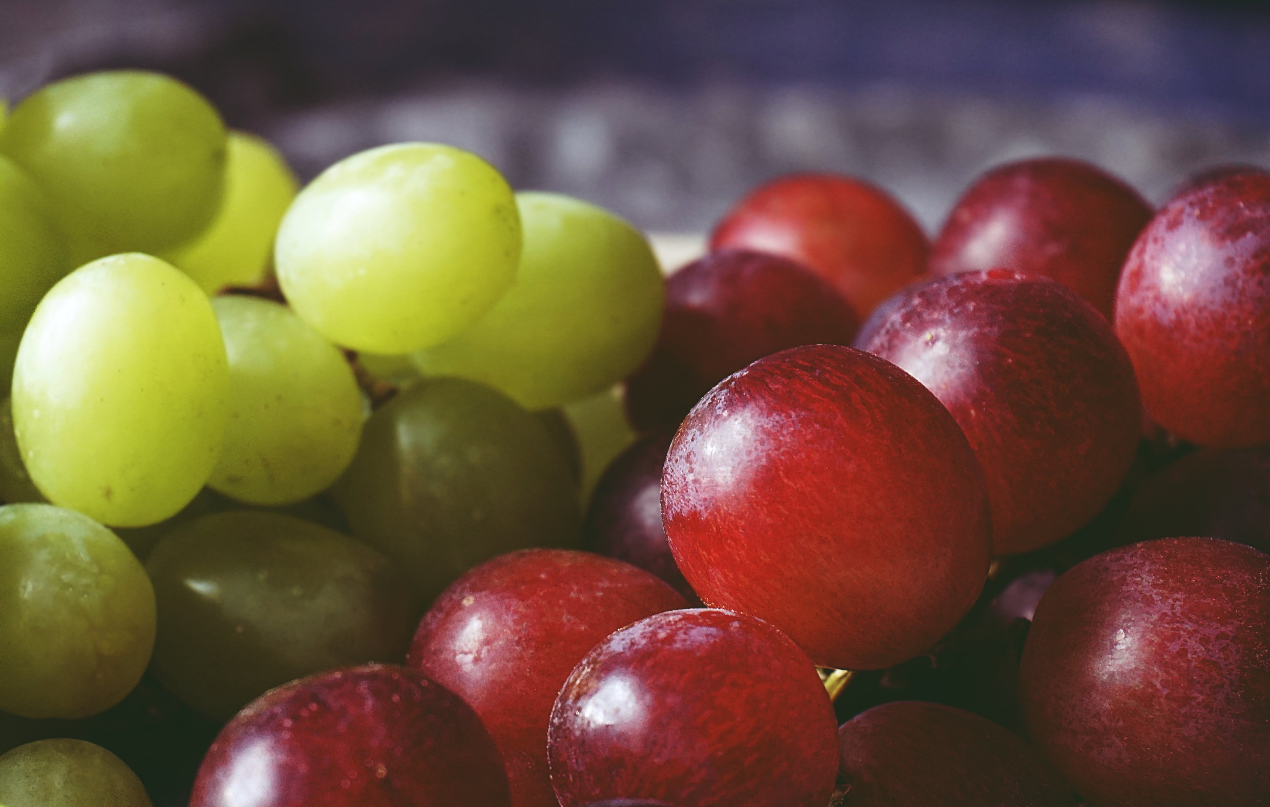Free stock photo of close up, eating healthy, food, fruit