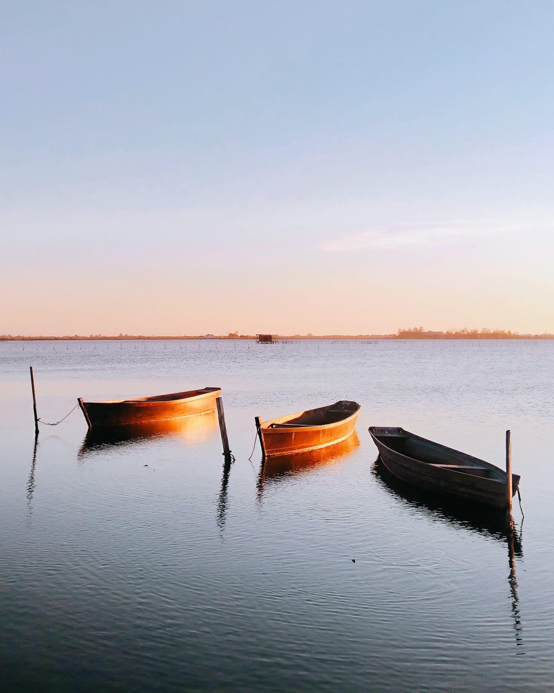 Three Brown Gondolas on Body of Water