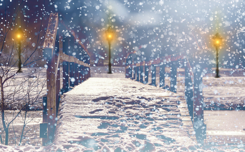 Free stock photo of snow, wood, light, nature