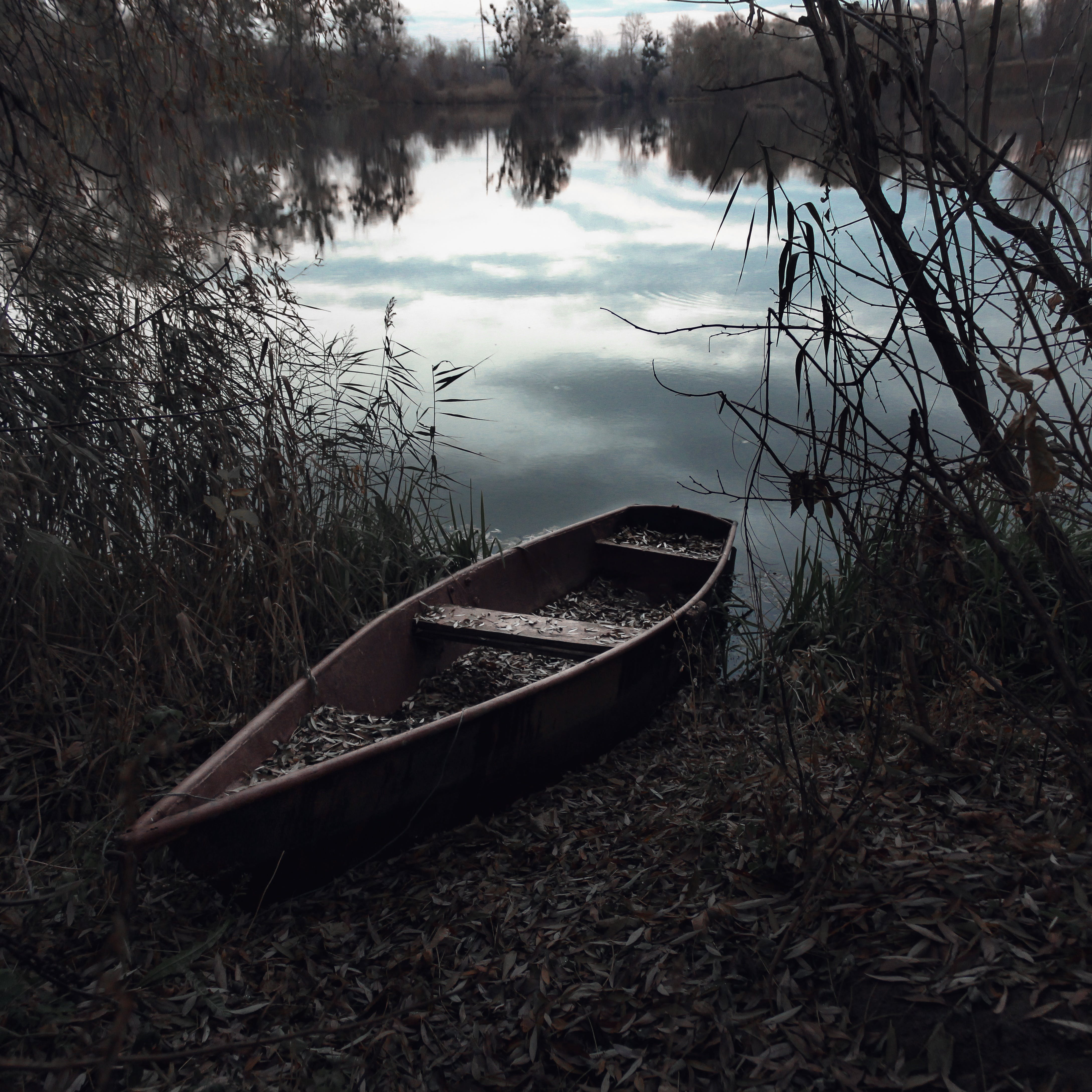 Foto d'estoc gratuïta de a l'aire lliure, arbres, banc, barca