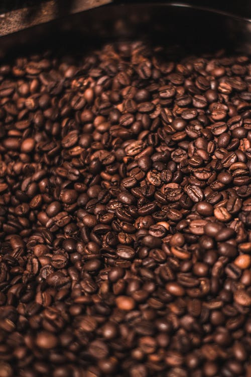 Free stock photo of #arabica, #coffee, #santacruz