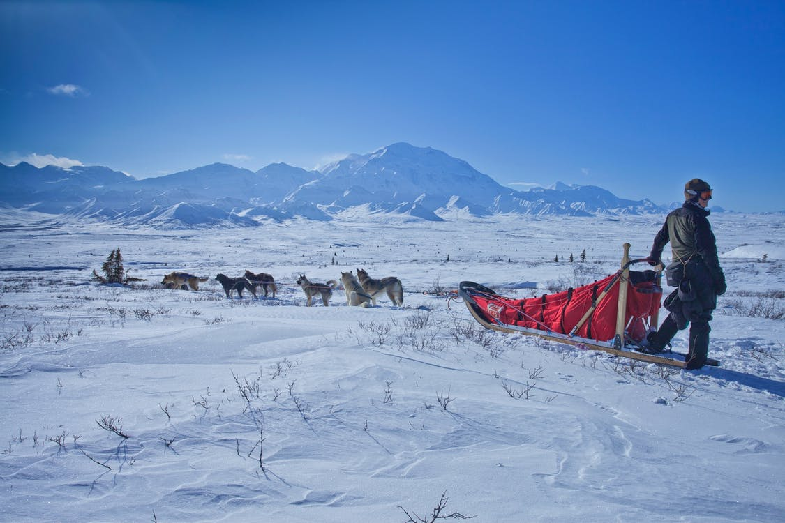 Man Standing Beside Sleigh