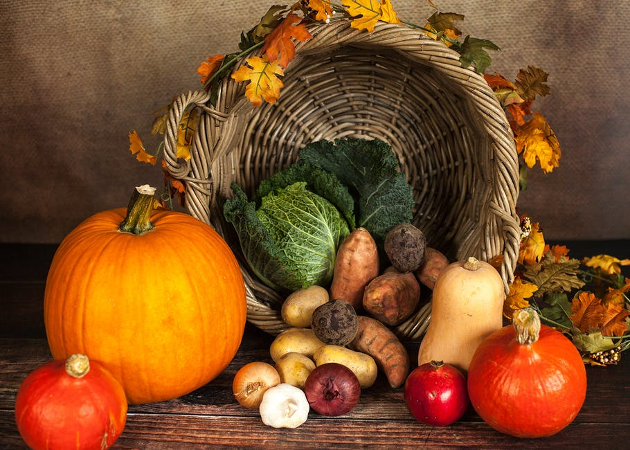 agriculture, basket, close-up