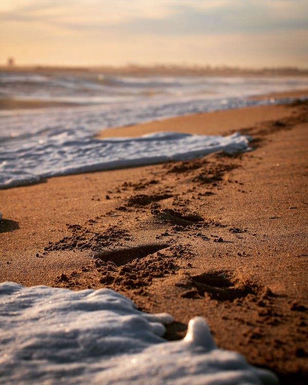 krajina, oceánské pobřeží, pěna