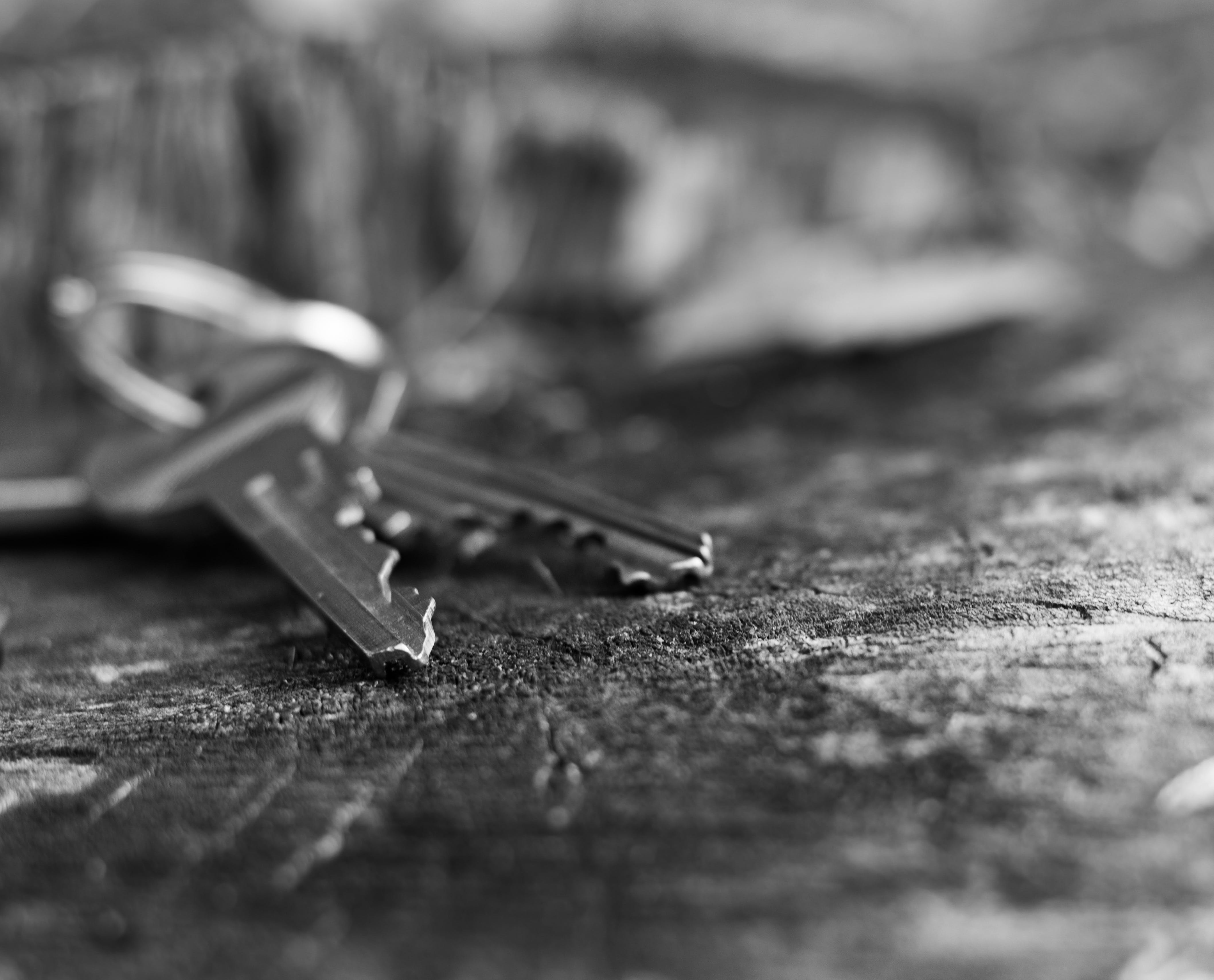 Grayscale Photo of Two Keys on Surface