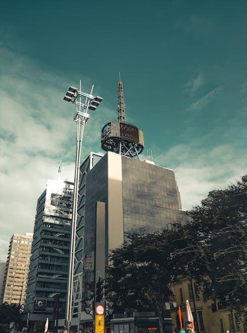 Foto d'estoc gratuïta de apreciació, art, art de carrer, avinguda paulista
