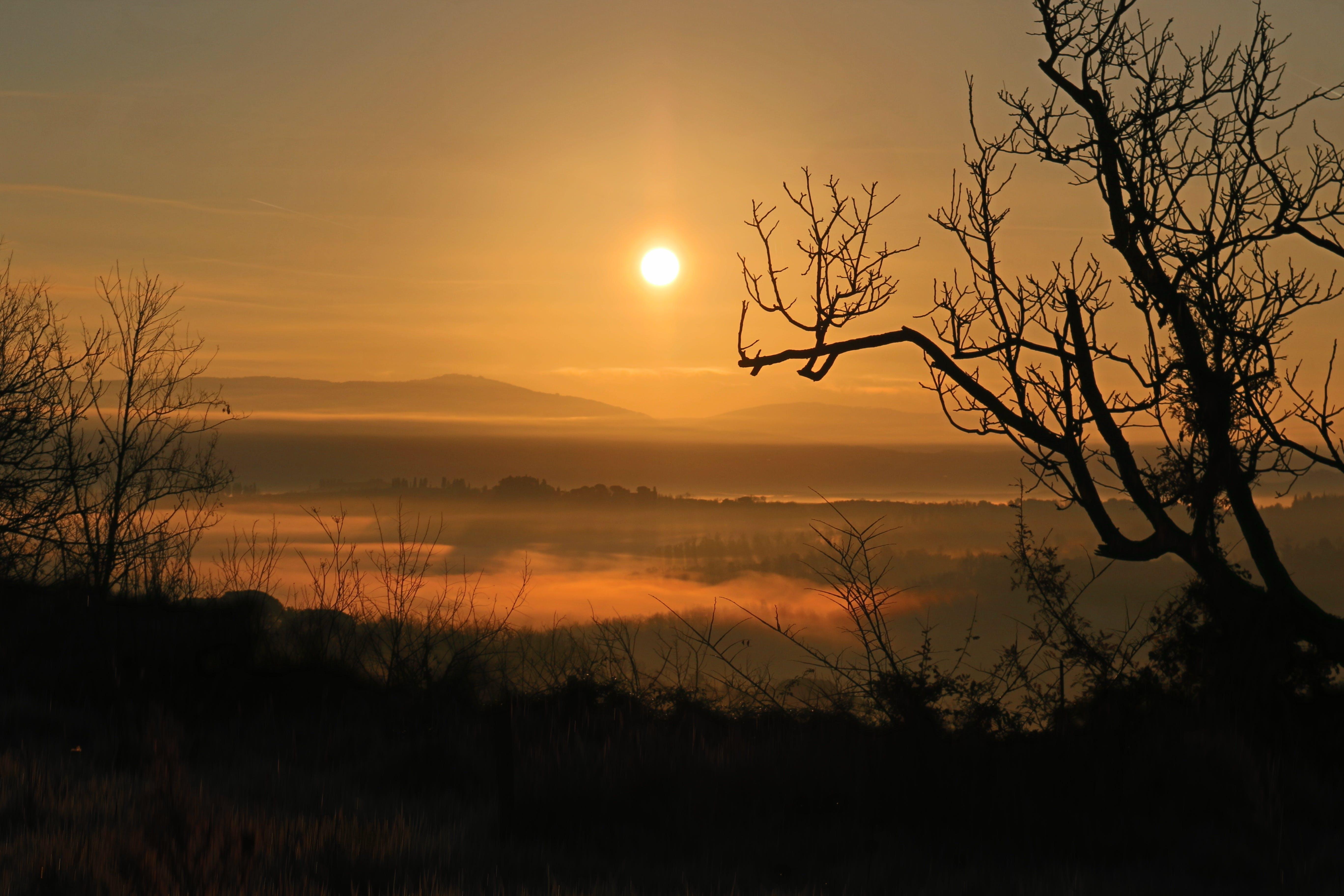 Základová fotografie zdarma na téma hory, krajina, lehký, mlha