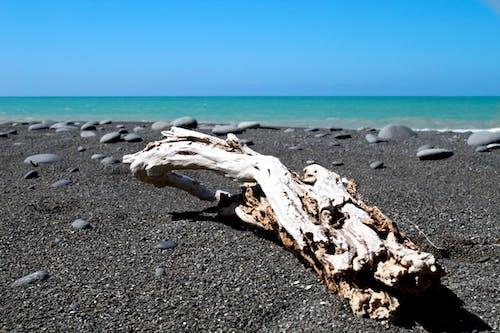 Photos gratuites de bord de mer, cailloux, eau, horizon