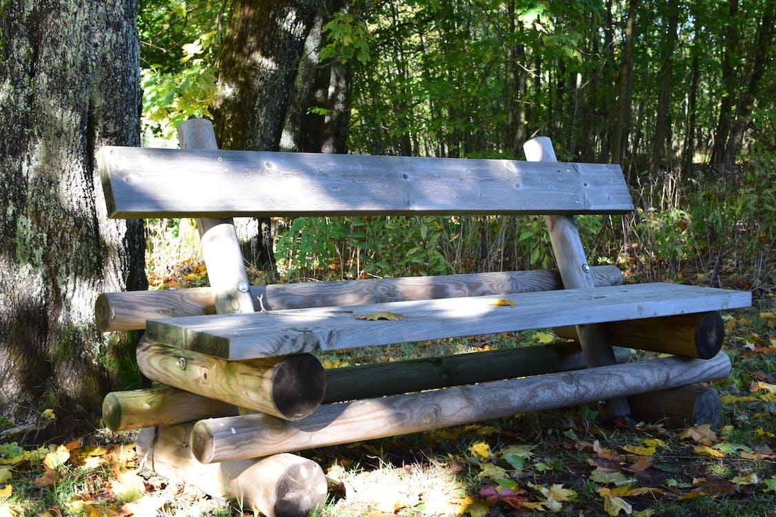 erdő, fa, fából készült