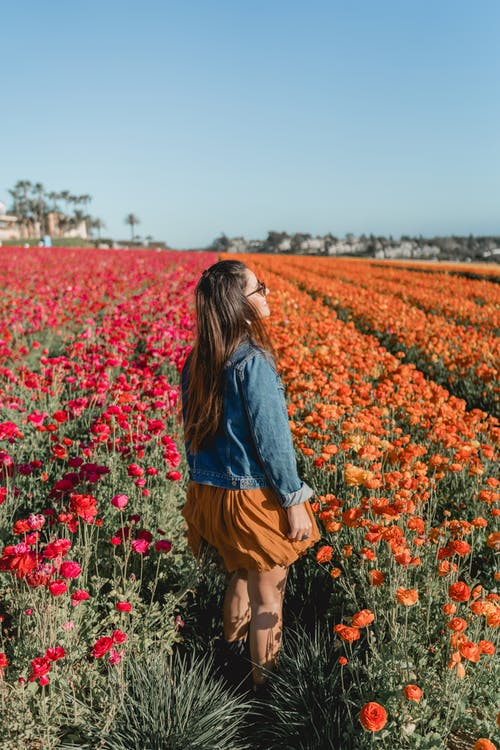 Photo of Woman Standing On Flower Field
