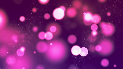 1000 Great Purple Background Photos Pexels Free Stock Photos