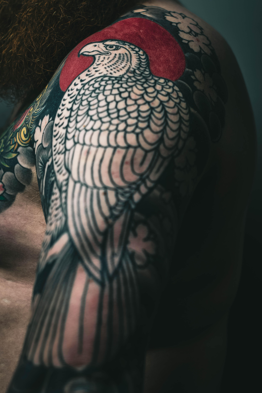 μεγάλο πουλί τατουάζ