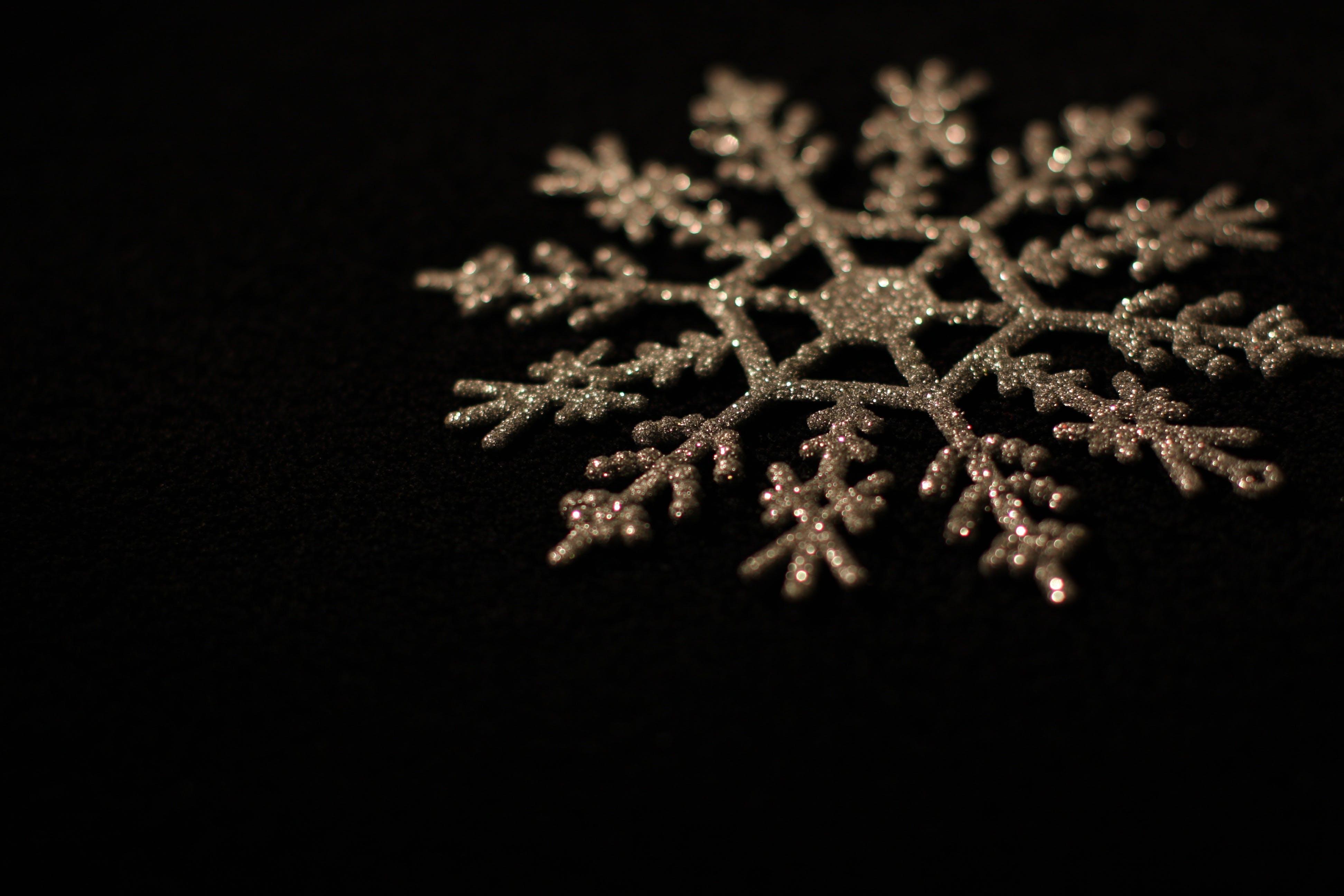 Brown Snowflakes