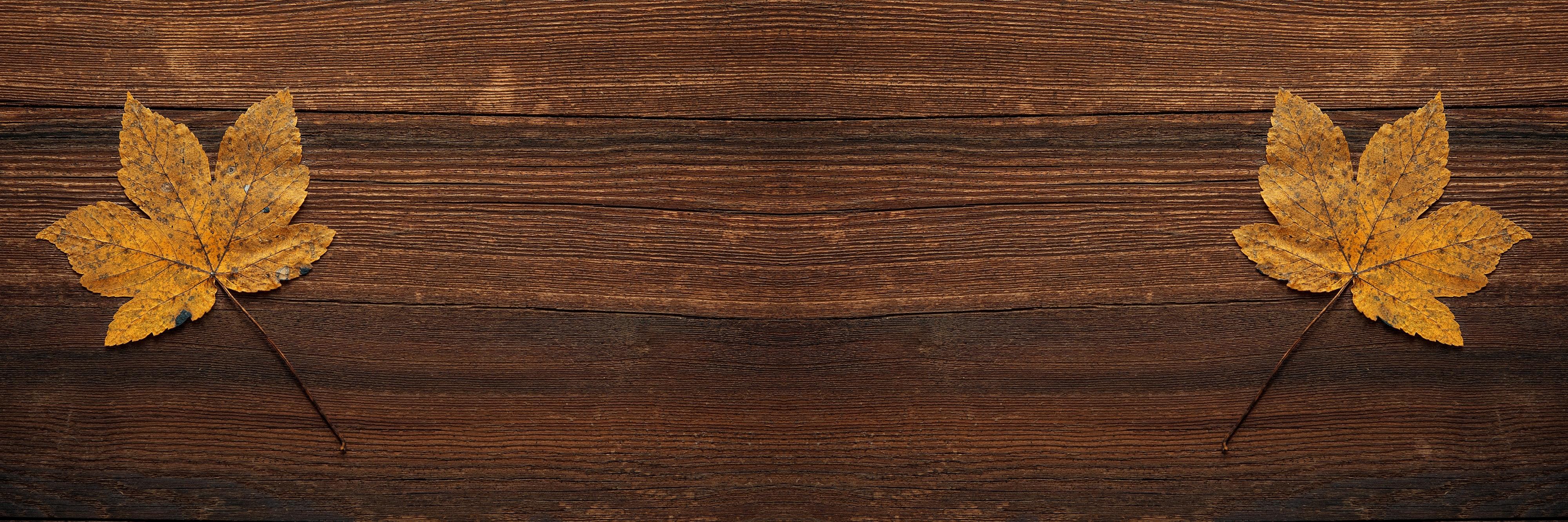 1000 Engaging Wood Background Photos 183 Pexels 183 Free