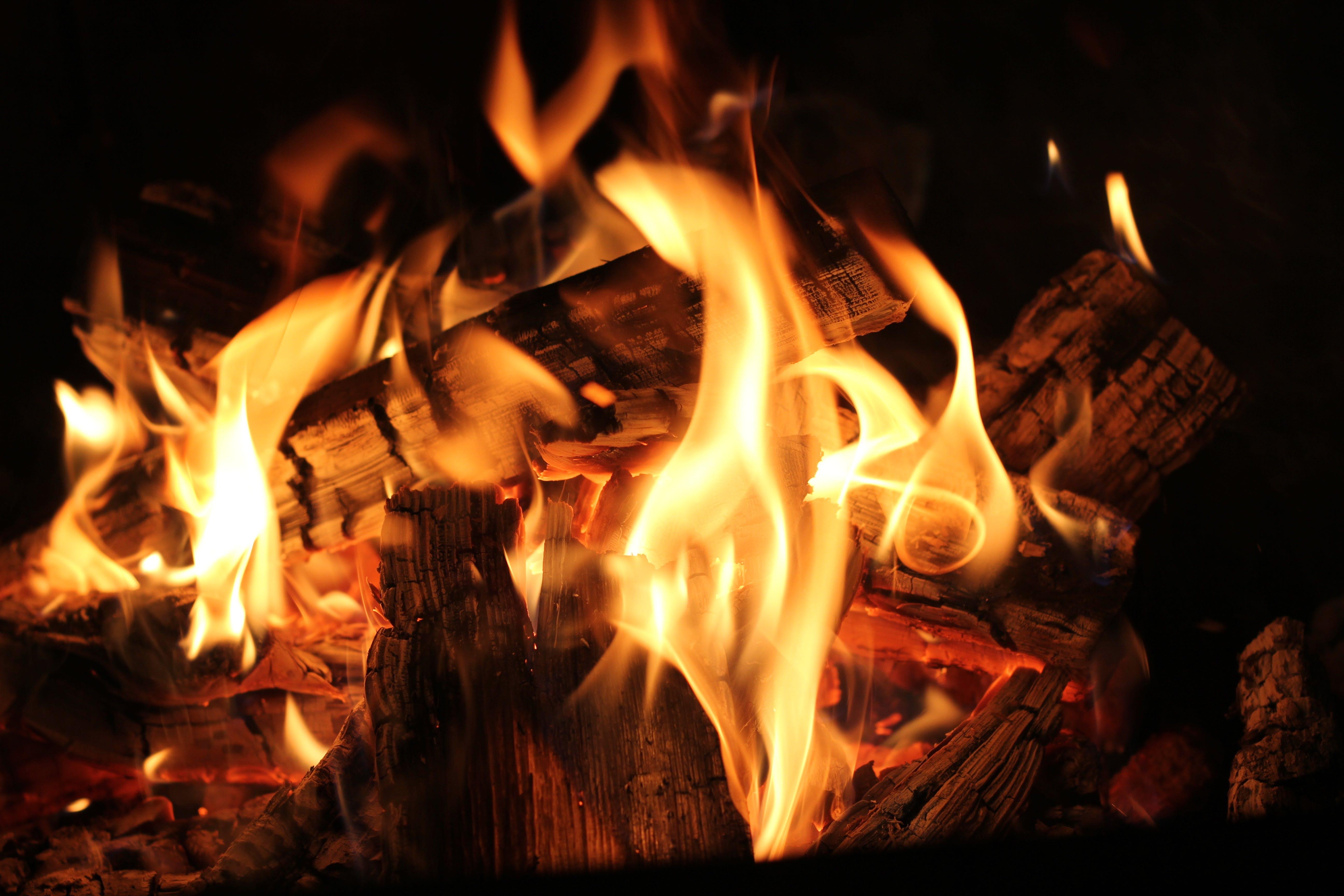 barbecue, blaze, bonfire