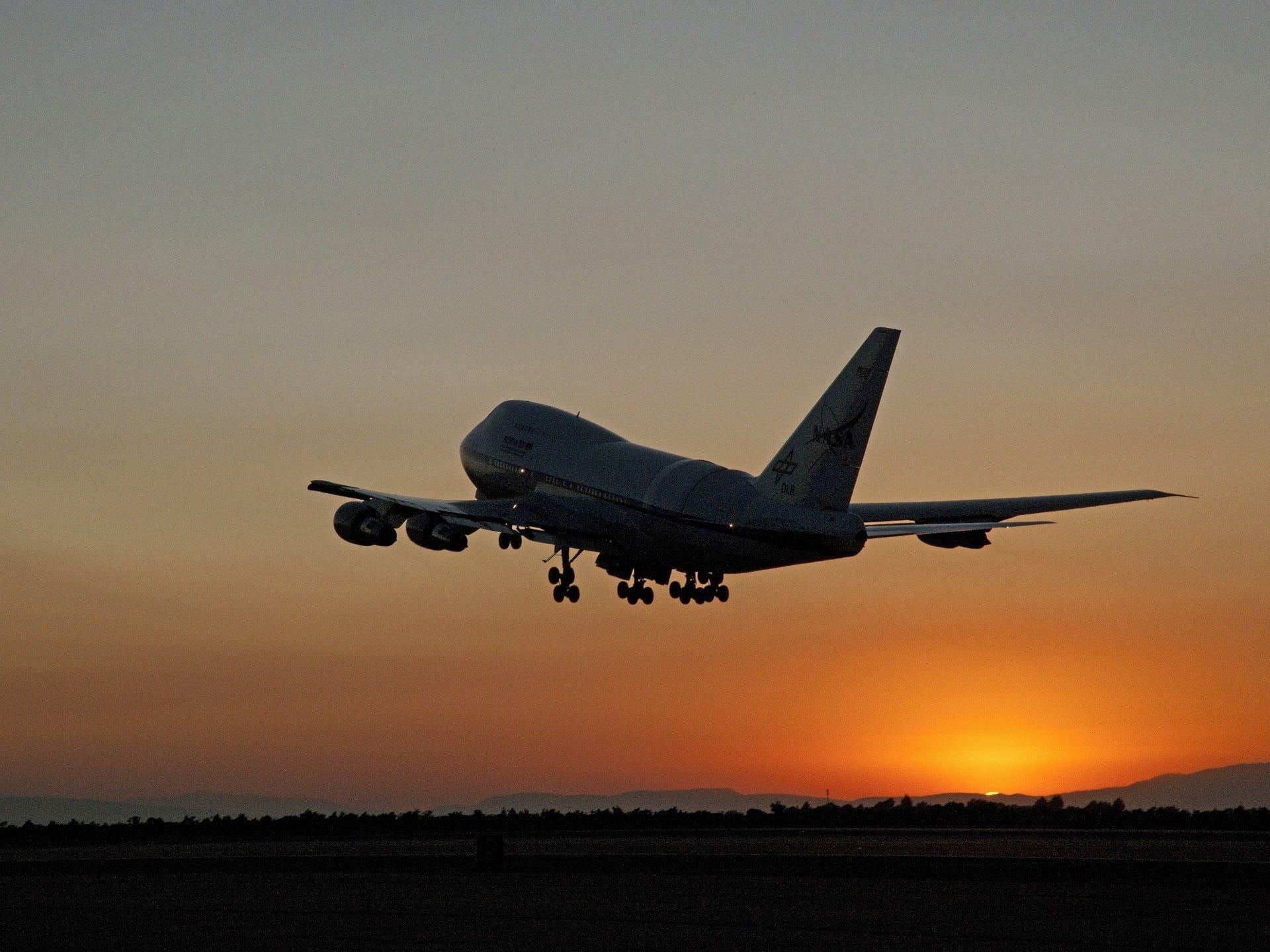 Free stock photo of flight, sky, sunset, flying