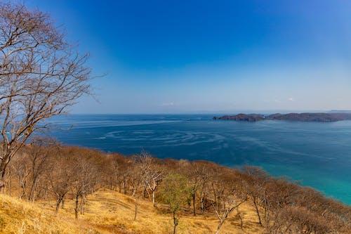 Foto d'estoc gratuïta de mar, natura, oceà pacífic, paisatge