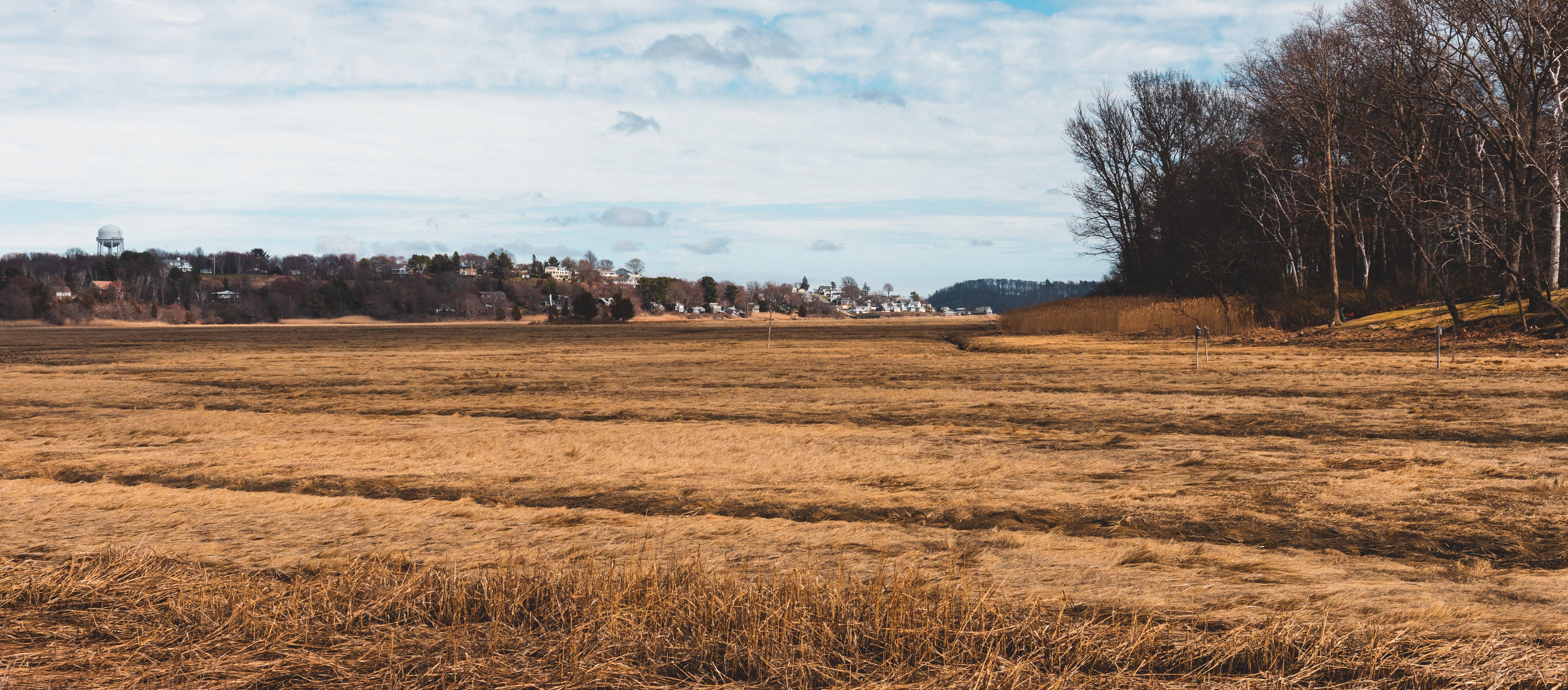 Základová fotografie zdarma na téma hřiště, krajina, mokřina, oceán