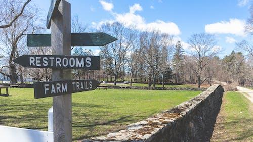 Free stock photo of farm, road, wall