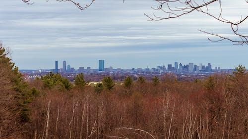 Free stock photo of boston, horizon, landscape, skyline