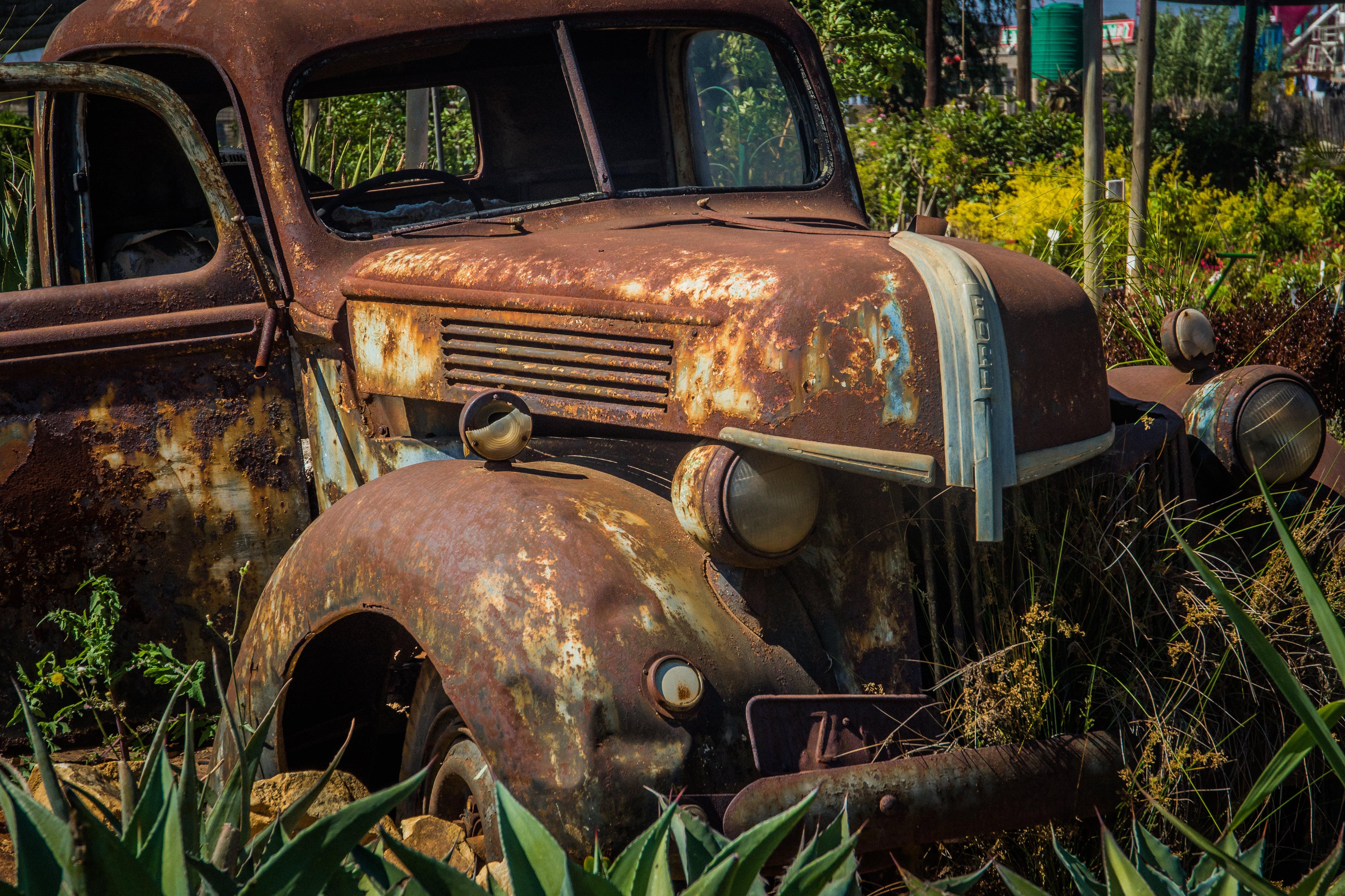 Free stock photo of broken, car, decor, ford