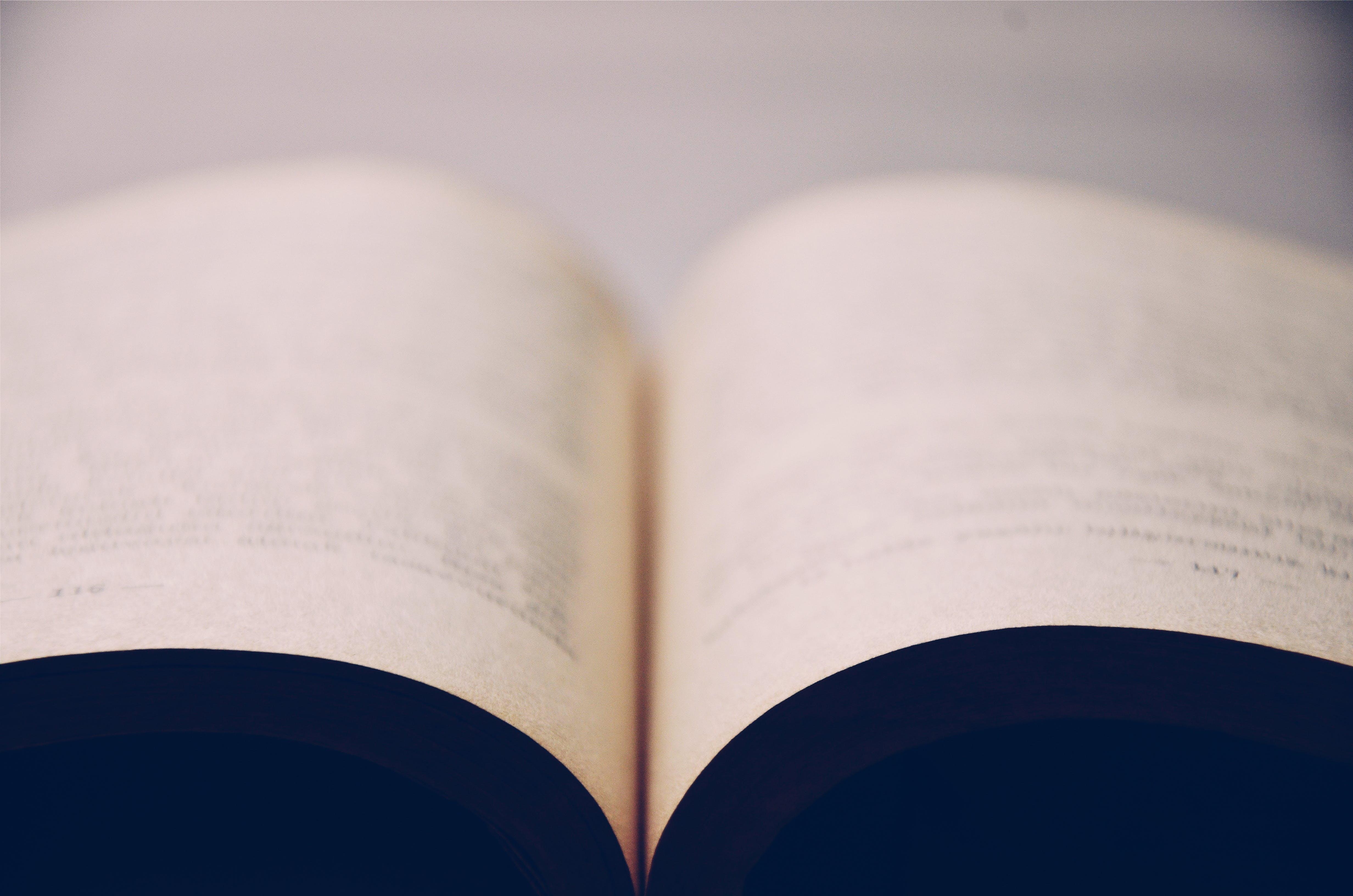 Δωρεάν στοκ φωτογραφιών με ανοιχτό βιβλίο, βιβλίο, γκρο πλαν, εστιάζω