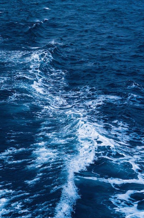 Foto stok gratis air, alam, di luar rumah, gelombang