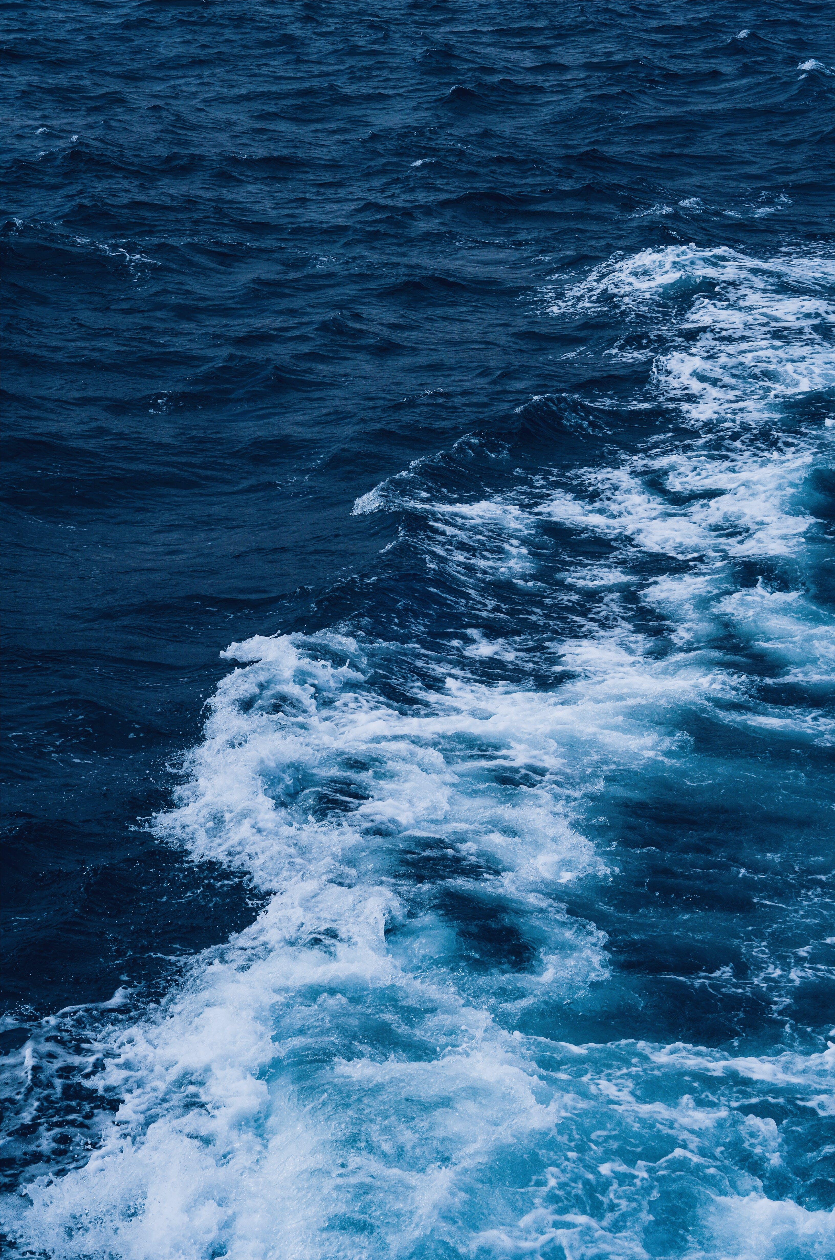 Foto d'estoc gratuïta de aigües blaves, escuma, esquitxada, mar