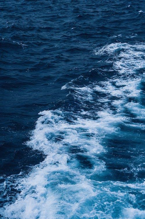 Бесплатное стоковое фото с волны, всплеск, голубые воды, море