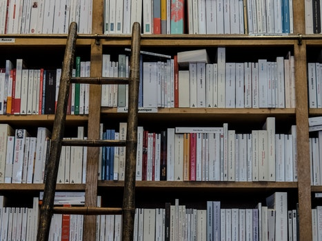 Free stock photo of books, bookshop, school, ladder