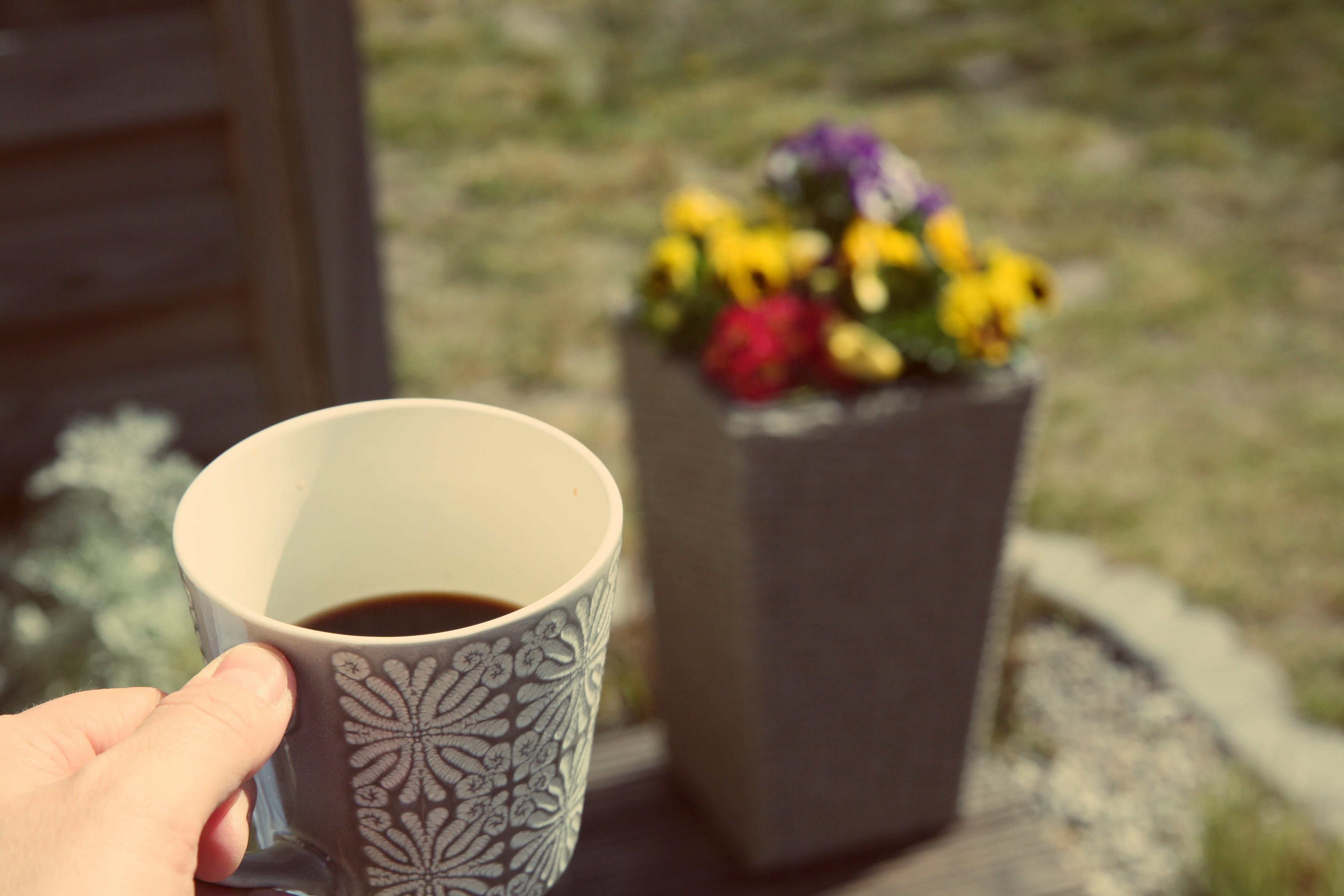 Бесплатное стоковое фото с кофейная чашка, отдых, отдыхающий, цветы