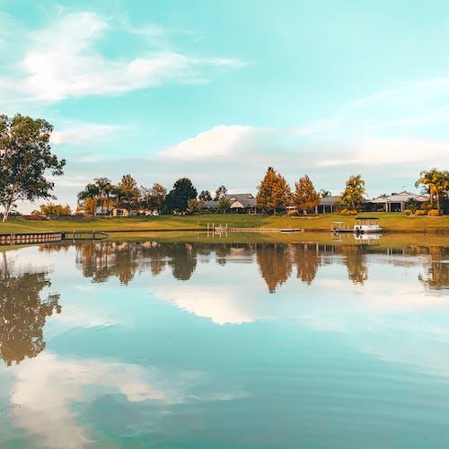 Foto d'estoc gratuïta de aigua, arbres, barques, blau