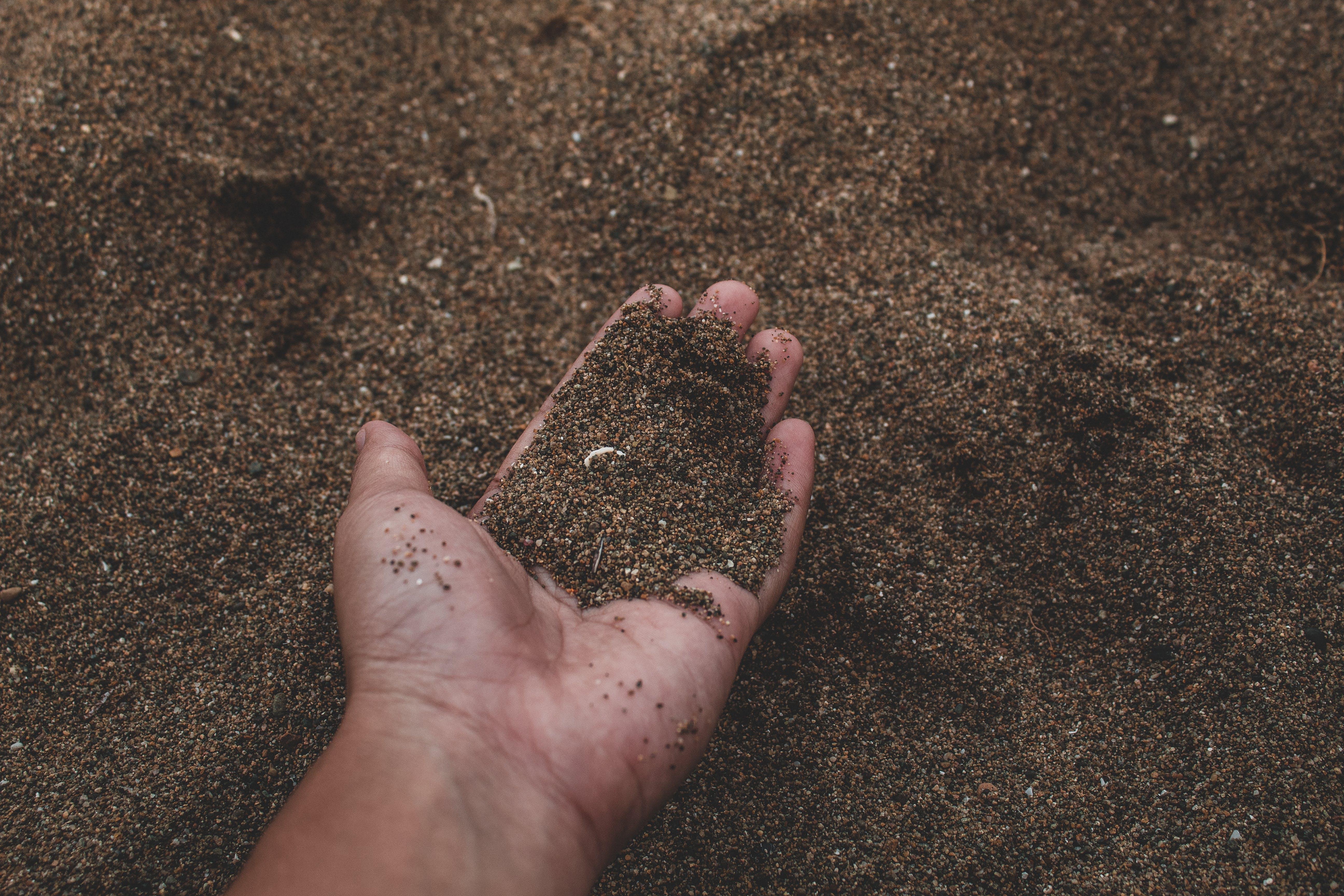 Foto stok gratis berpasir, memegang, pasir, permukaan