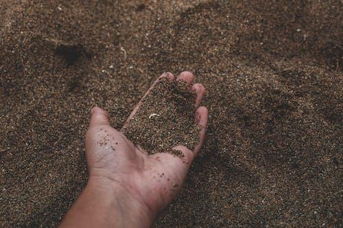 Darmowe zdjęcie z galerii z brud, chropowaty, dłoń, gleba