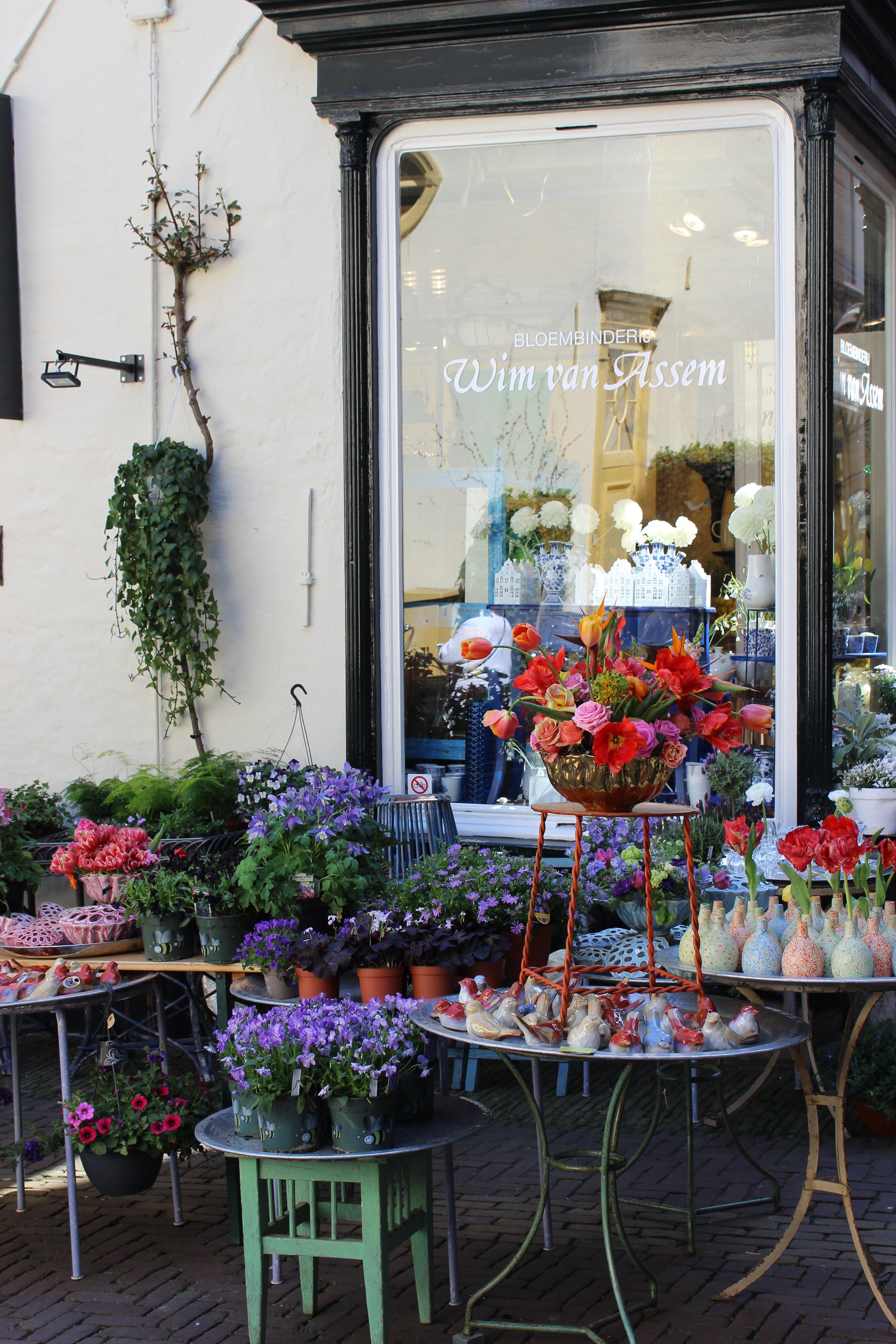 Fotos de stock gratuitas de al aire libre, calle, calle de adoquines, decoraciones
