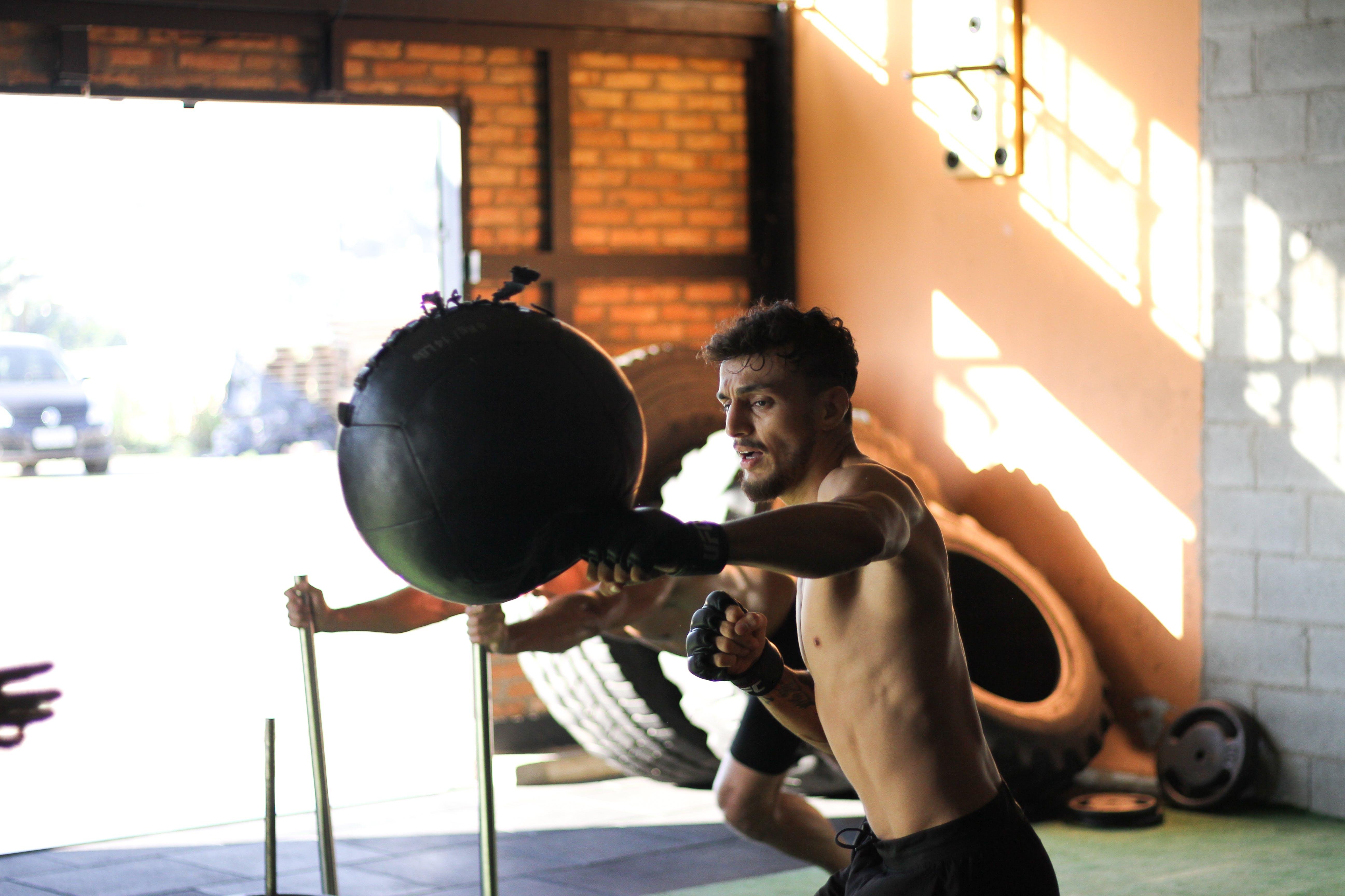 Základová fotografie zdarma na téma akce, aktivní, biceps, bojovník