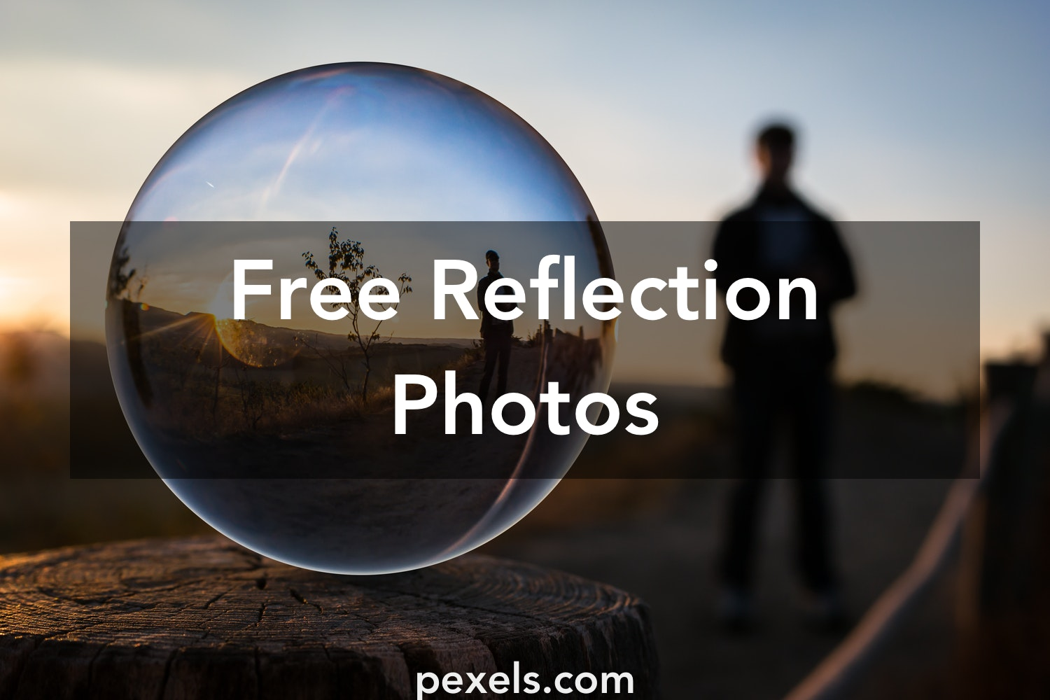 1000 great reflection photos pexels free stock photos for Images of the best