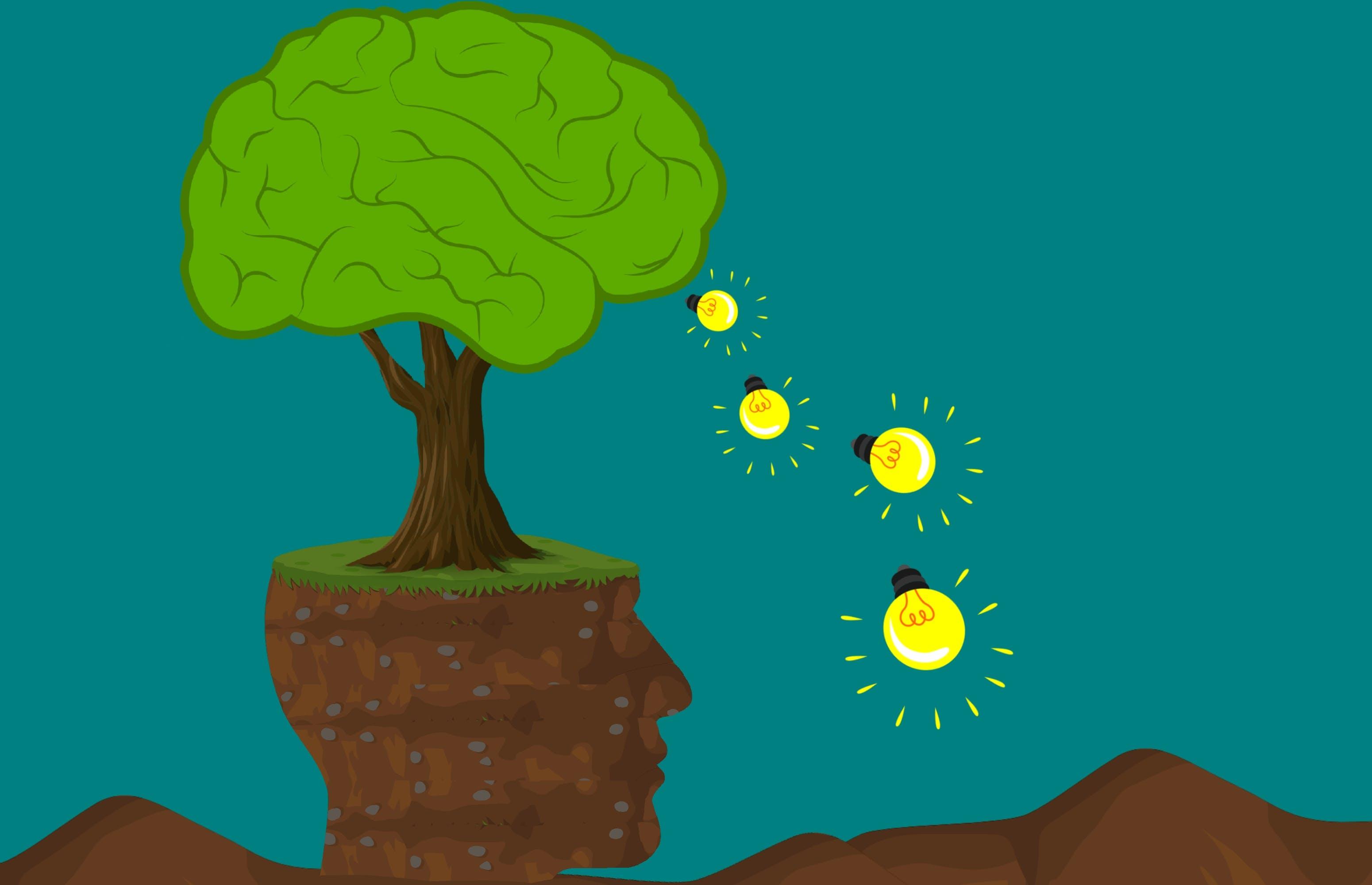 Free stock photo of brain, education, environmental, growth