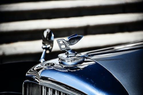 Základová fotografie zdarma na téma auto, bentley, křídla