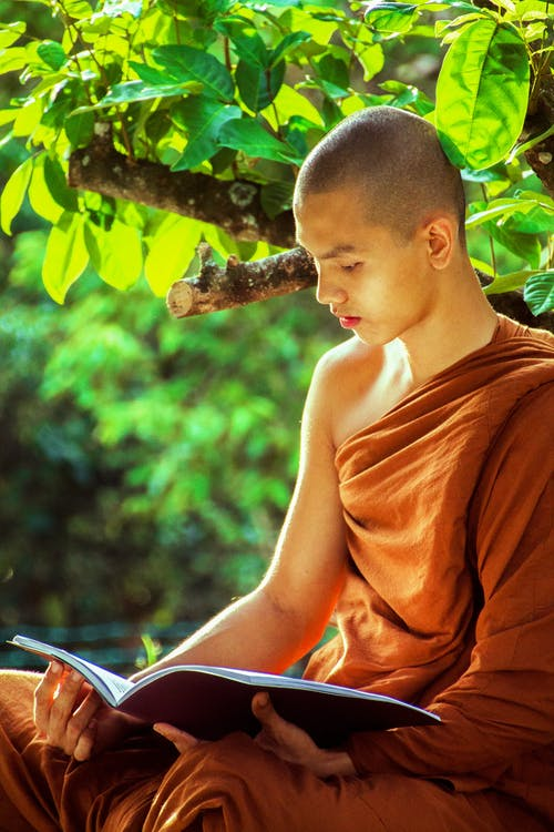 Monk Sitting Beside Tree While Reading Book