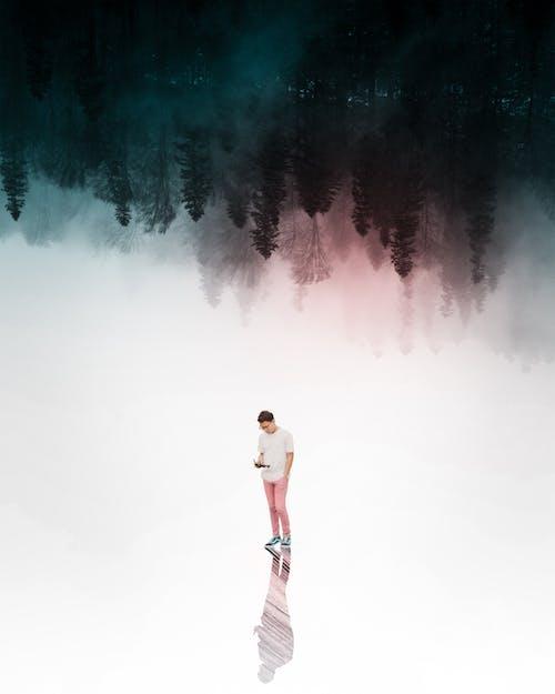 Základová fotografie zdarma na téma bílá, černý les, červená, dron