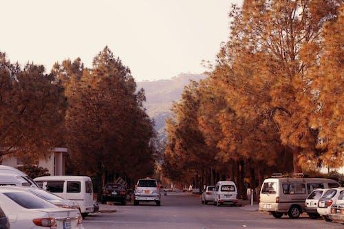 Безкоштовне стокове фото на тему «ісламабадська дорога, Пакистан, фейсал масджид»