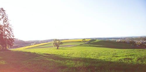 Ingyenes stockfotó gyönyörű táj, nyár, tájkép témában