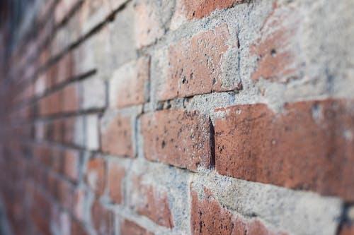 Fotos de stock gratuitas de muros de ladrillo