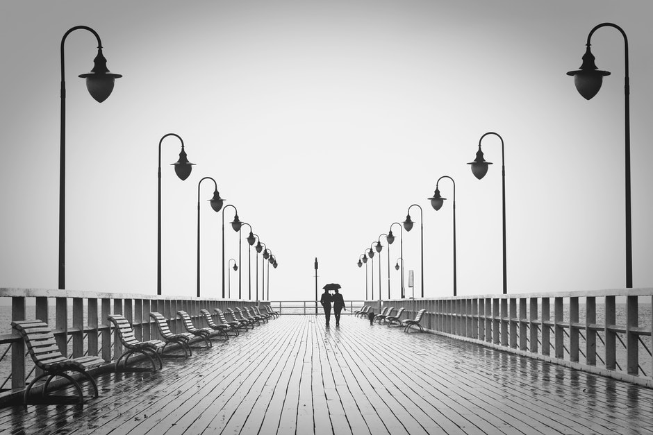 affection, benches, black and-white