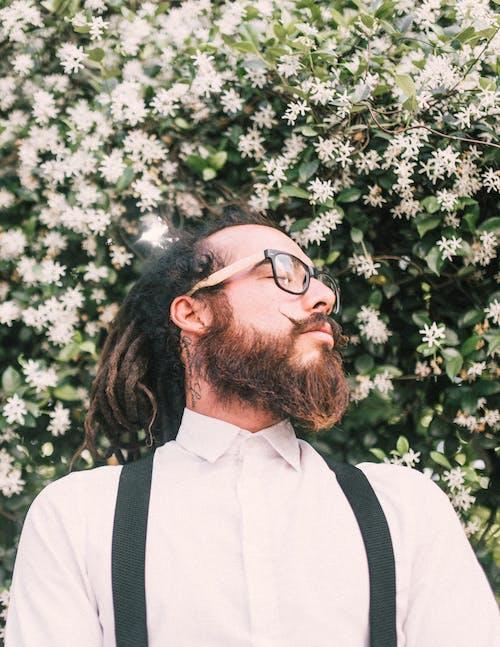 꽃, 꽃이 피는, 남성, 남자의 무료 스톡 사진
