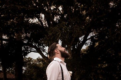 Základová fotografie zdarma na téma chloupky na obličeji, denní světlo, focení, kšandy