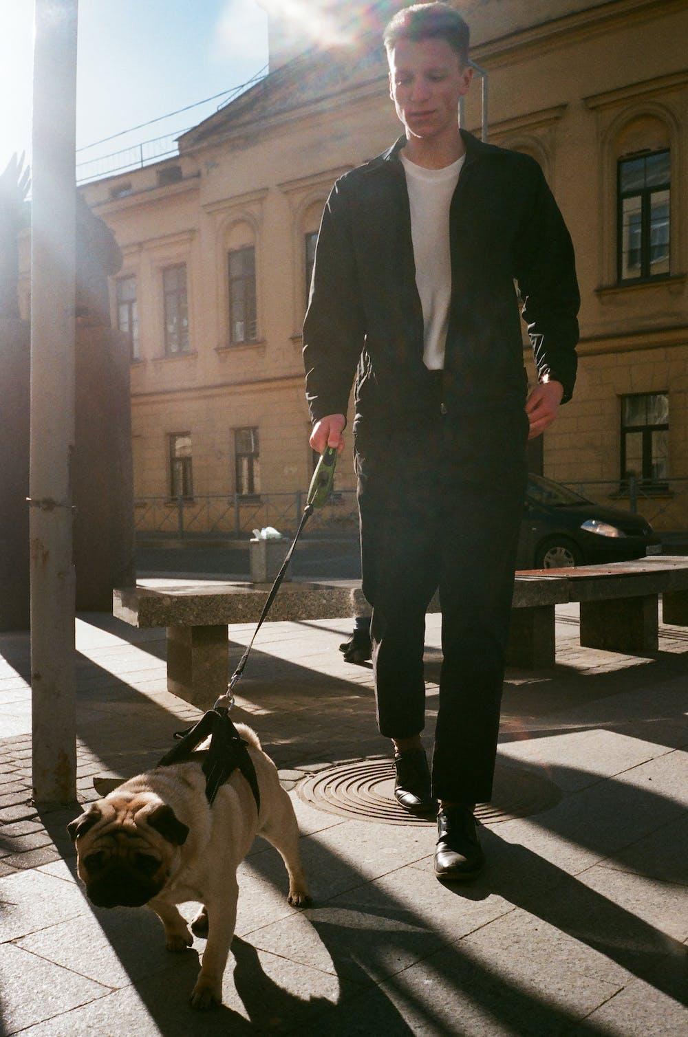 Man holding dog leash. | Photo: Pexels